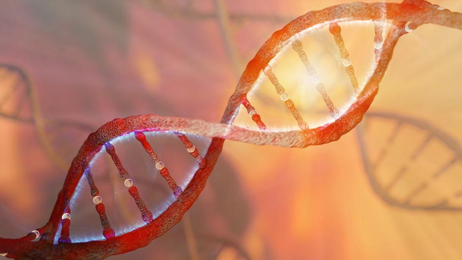 KI entschlüsselt Proteine zur Bekämpfung von COVID-19