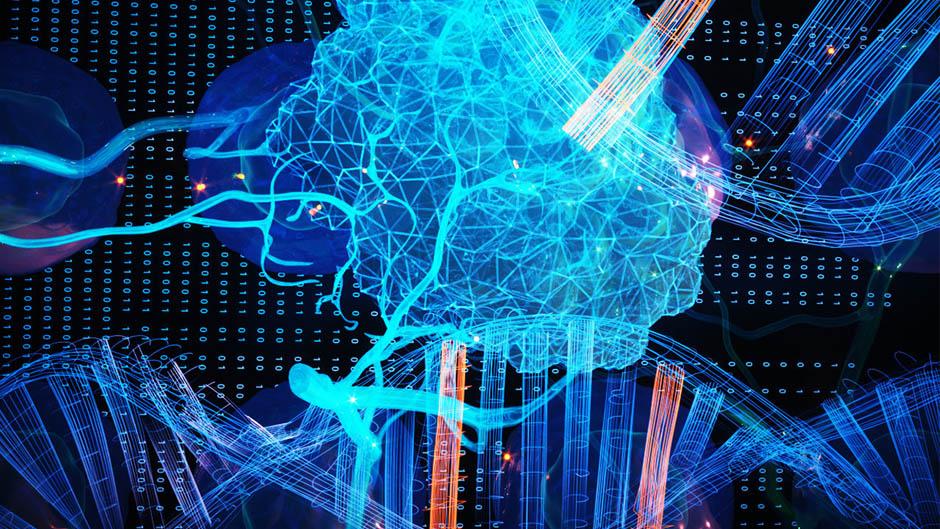 Neue Krebsgene durch maschinelles Lernen identifiziert